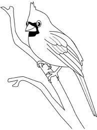 Oiseau Dessin Recherche Google Bird Coloring Pages Bird Drawings Bird Art