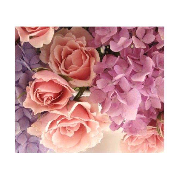 ♥ ♥ Rose Vintage Jardín
