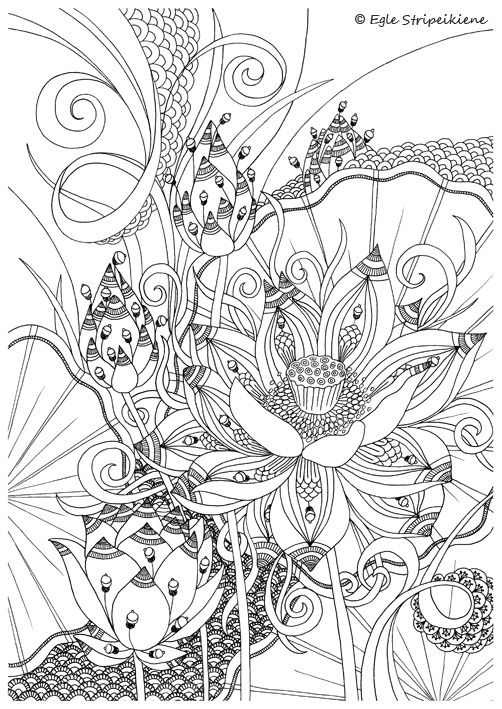 Coloring Page For Adults Lotus By Egle Stripeikiene Size A3