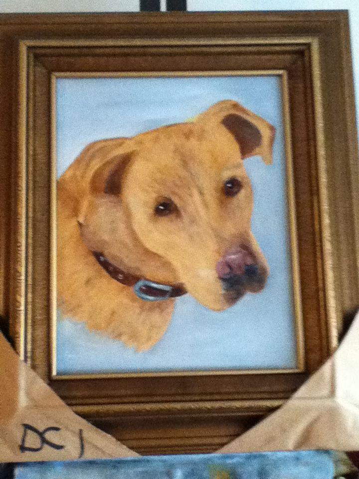 Bailey - pet portrait. Original oil painting.