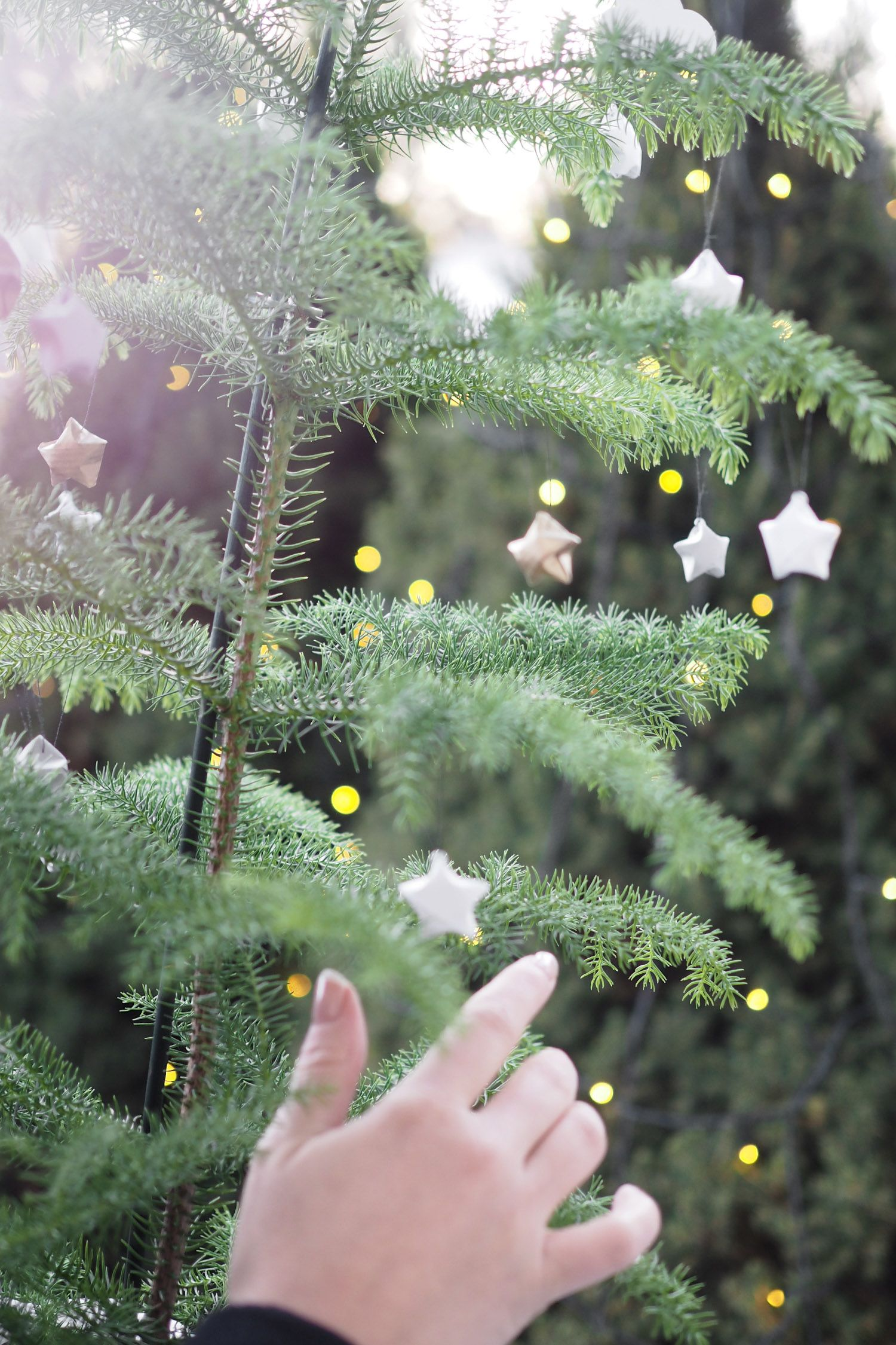 C and the city - Christmastrees and smaller in-house-trees now on the blog: http://www.idealista.fi/charandthecity/2016/11/01/diy-ruukkukuusi-joulukoristeet