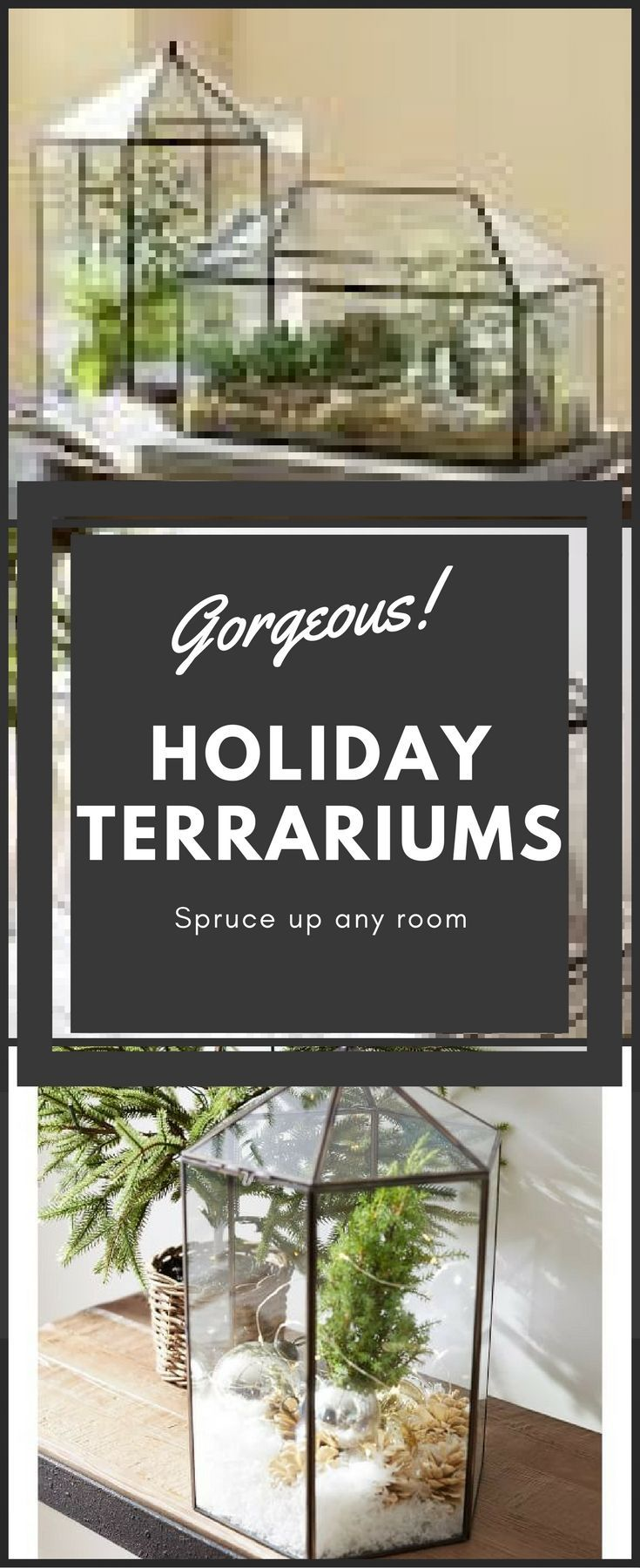 Beautiful Holiday Terrariums I have some great ideas for these