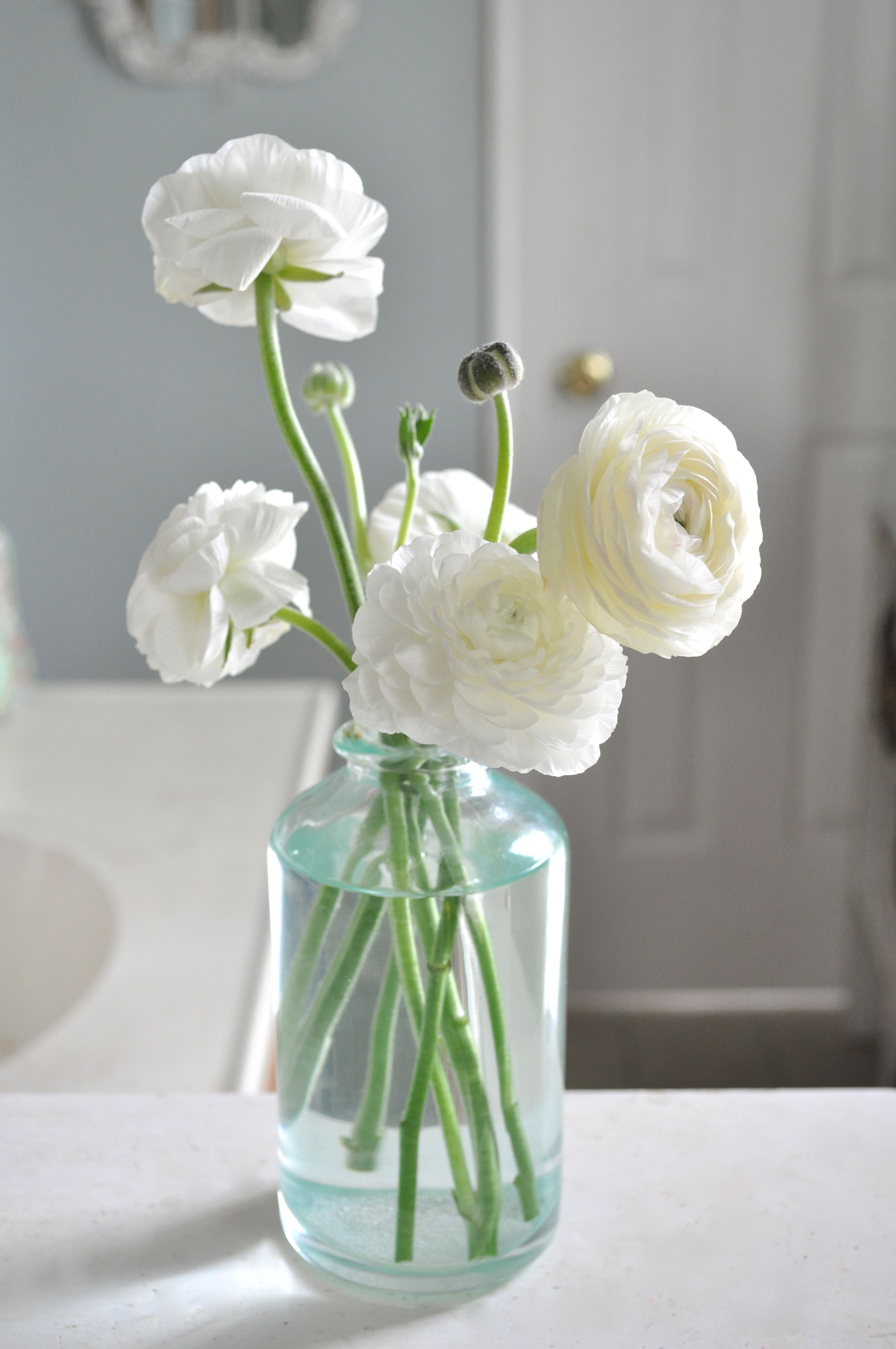 Id Love Some Of These White Ranunculus In My Bouquet In Some Of