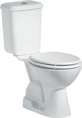 Groovy Aylin Combined Bidet Toilet Close Coupled We Know That The Customarchery Wood Chair Design Ideas Customarcherynet