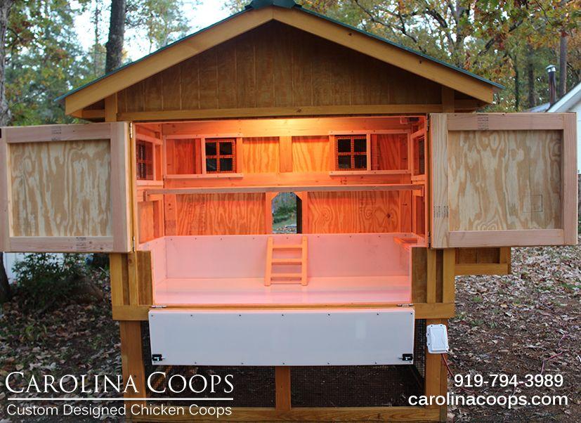 Carolina Coop Chickens Backyard Backyard Chicken Coops Chicken Coop