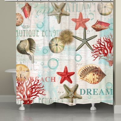 Laural Home Dream Beach Shells Shower Curtain Bedbathandbeyond