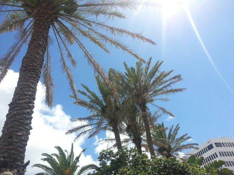 Bermuda - Take me back!