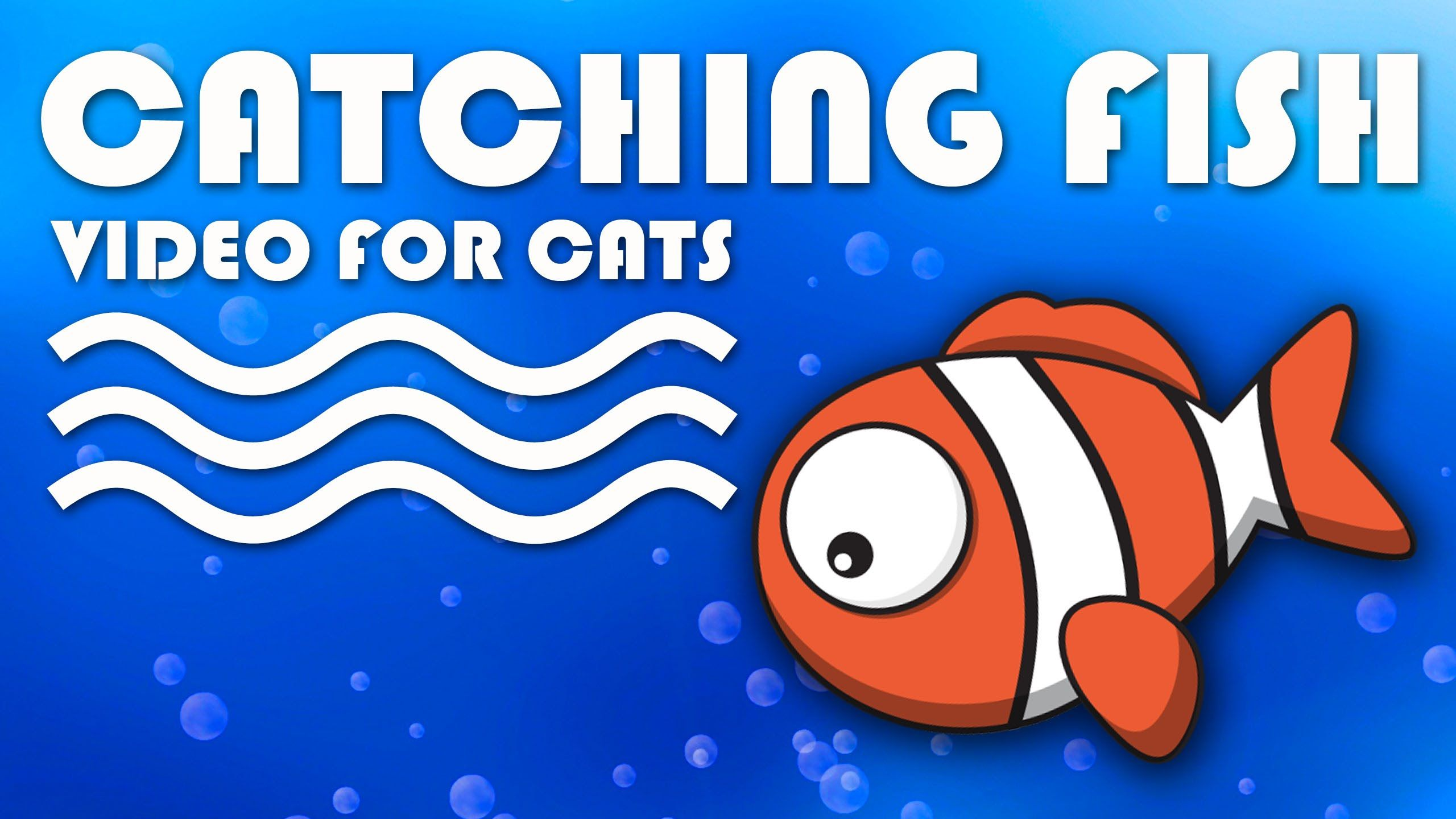 ENTERTAINMENT VIDEO FOR CATS. Catching a Cute Fish