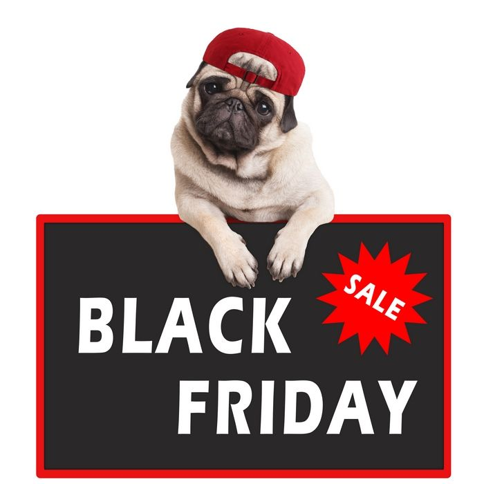 Best 58 Black Friday Deals On Dog Beds To Look Out For Dog 640 x 480