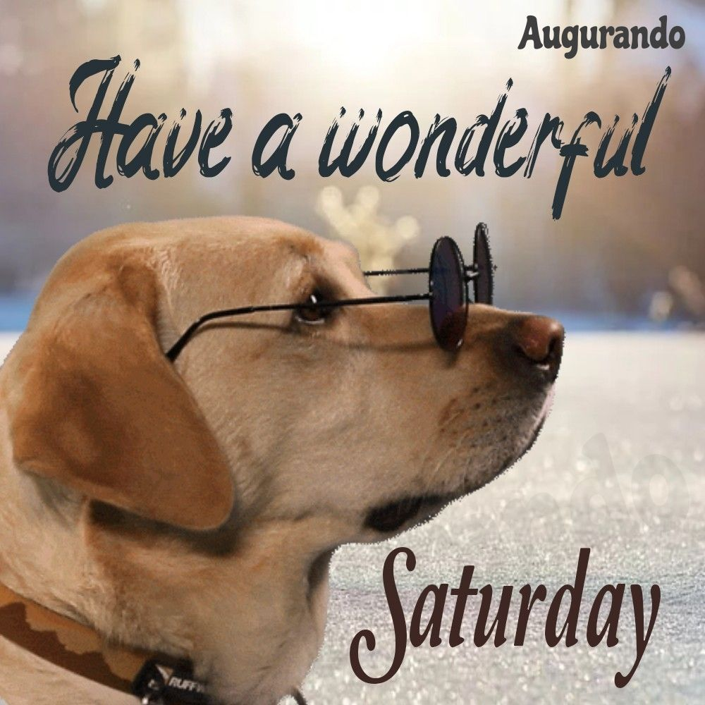 Best Good Morning Saturday Images Always Updated Images Good Morning Saturday Images Good Morning Saturday Good Morning Happy Saturday