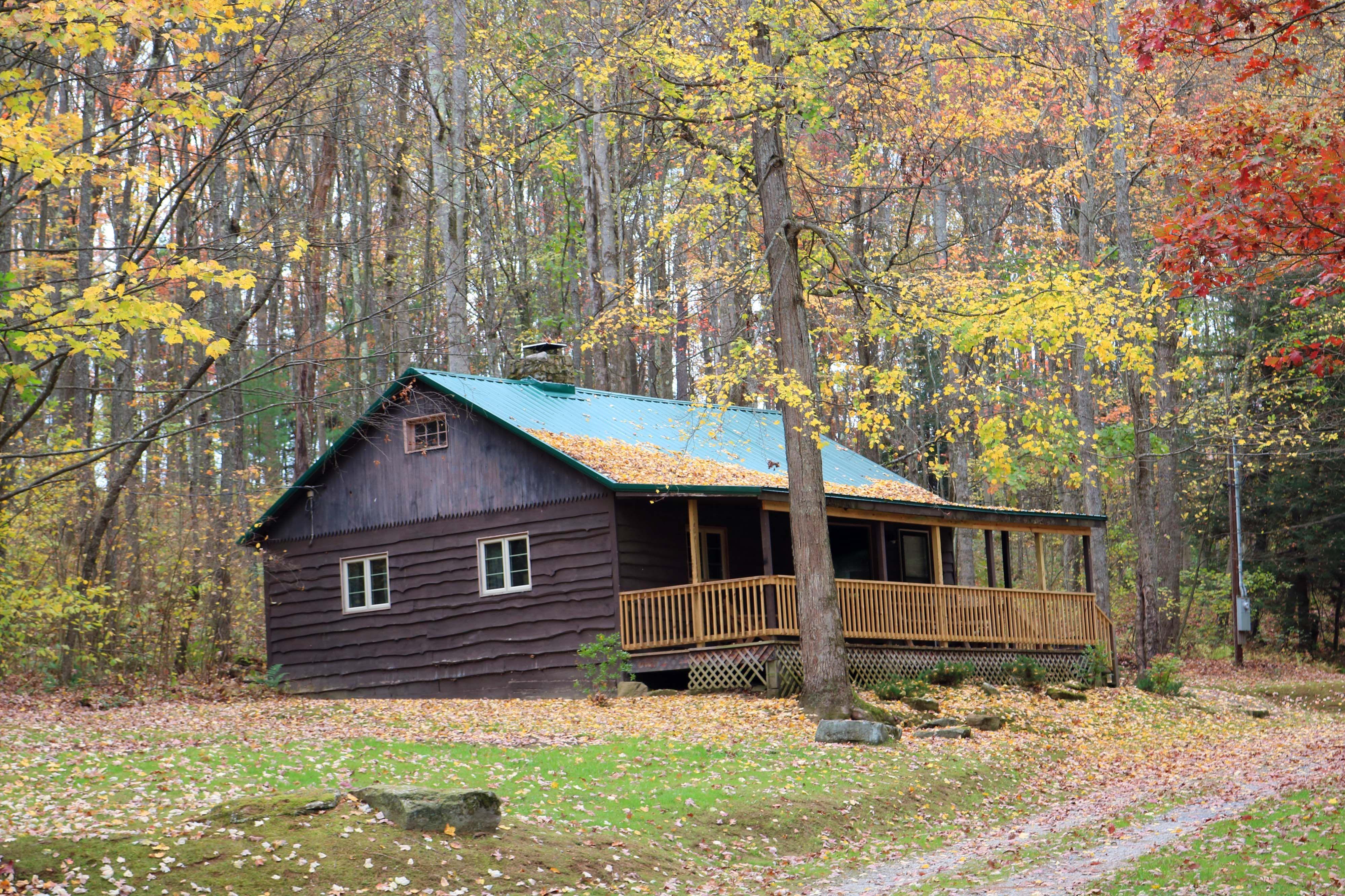Whispering Oaks Cabin Forest Cabin Cabin Cabin Rentals