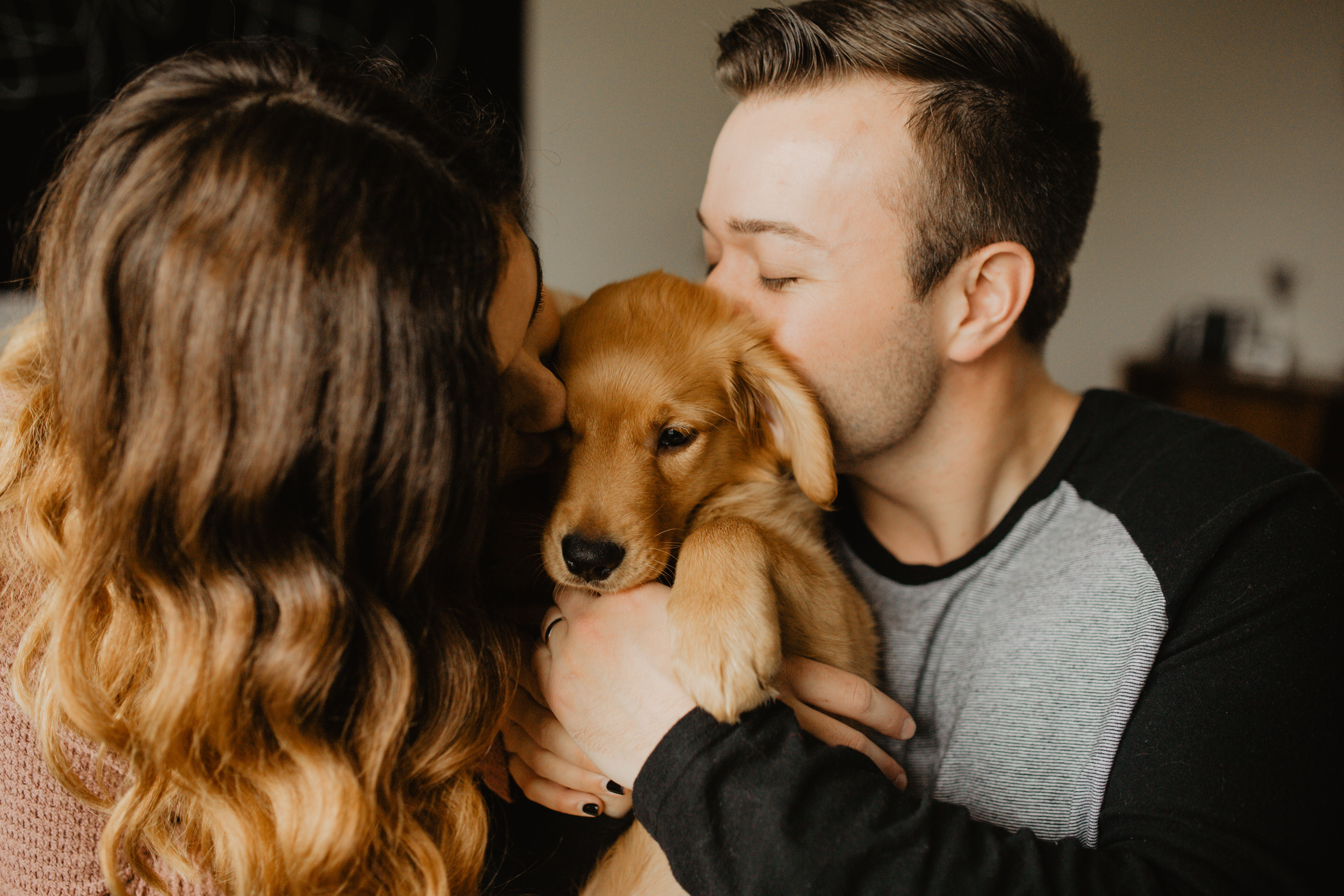 This In Home Couple Session With Their Golden Retriever Puppy Was