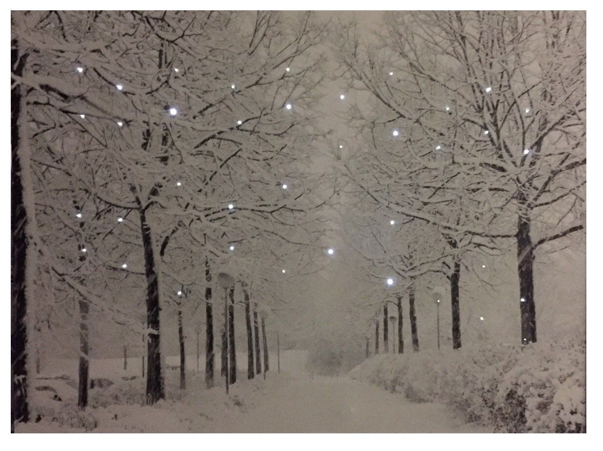 Winter Trees Battery Operated Led Lighted Canvas 137 Canvas Light Art Christmas Paintings Lighted Canvas Art