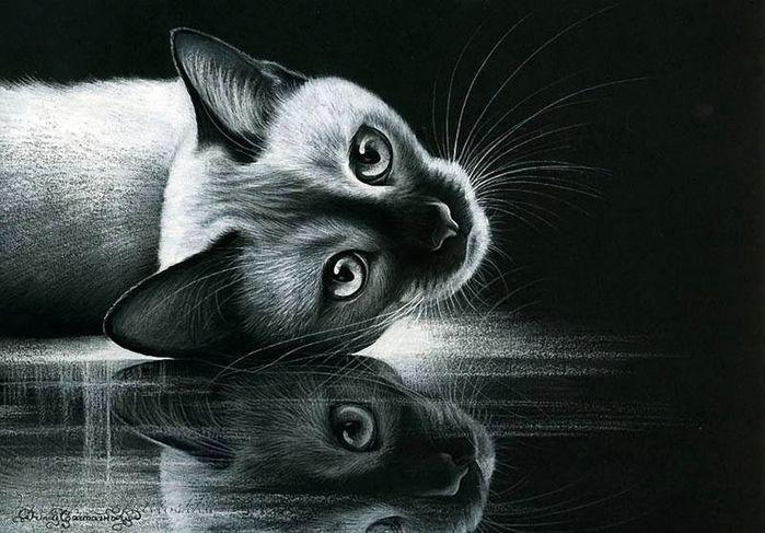 Кошки Ирины Гармашовой. Обсуждение на LiveInternet ...