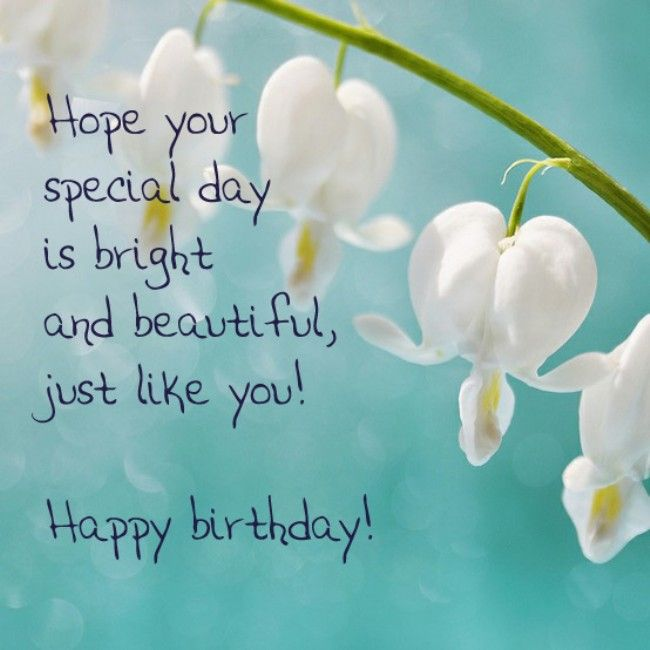 Birthday Card Messages My Birthday Pinterest – Happy Birthday Card Message