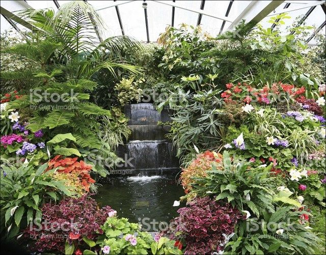 Must know 60 awesome indoor gardening ideas indoor gardening indoor tropical garden workwithnaturefo