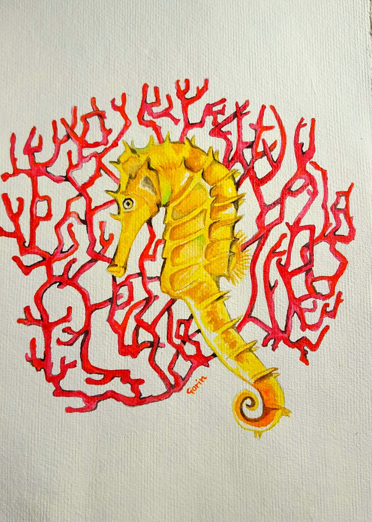 Seahorse original watercolor by gorinart inspiration pinterest