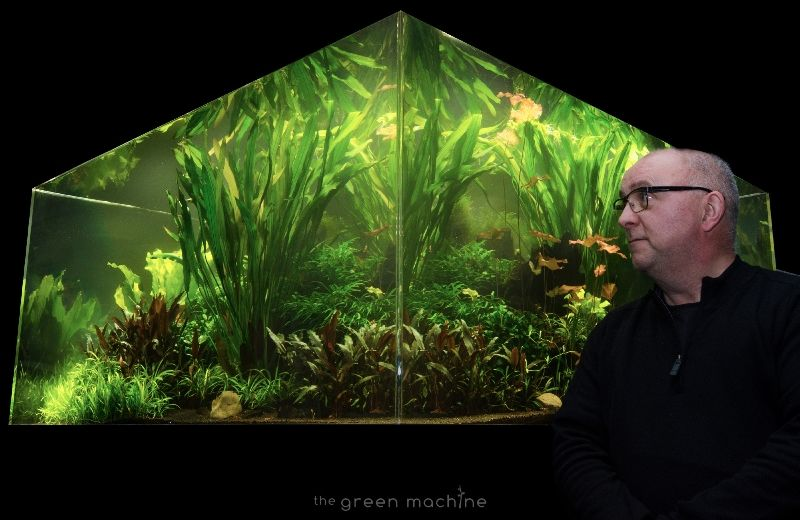 The Green Machine Aquascaping News Dec'14 | Aquascape ...