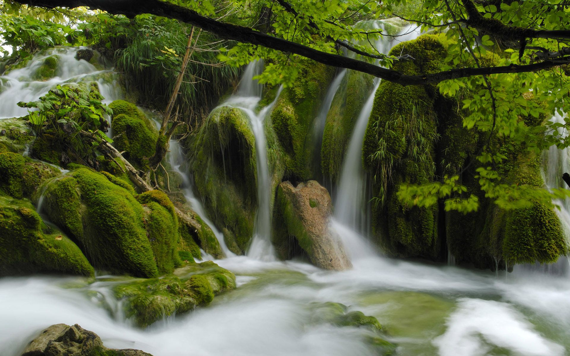 beautiful stream wallpapers find best latest beautiful stream wallpapers in hd for your pc desktop