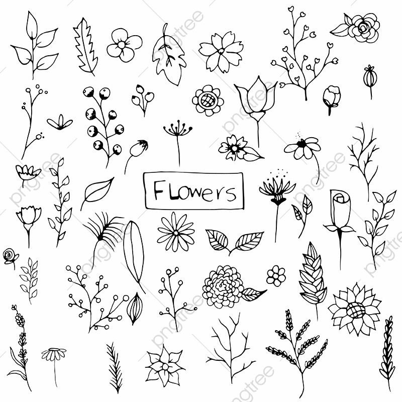 Hand Drawn Flowers Pack, Hand Drawn, Flowers, Flower PNG and Vector with Transparent Background for Free Download