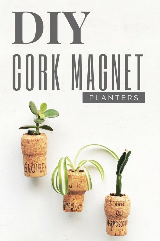 DIY Cork Magnet Planters from {nifty thrifty things}