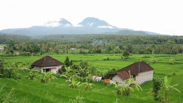 Freiwilligenprojekte auf Bali mit AIFS