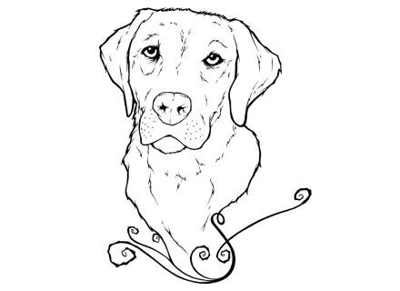 Pin By Sarah Anderson On Coolers Puppy Coloring Pages Golden