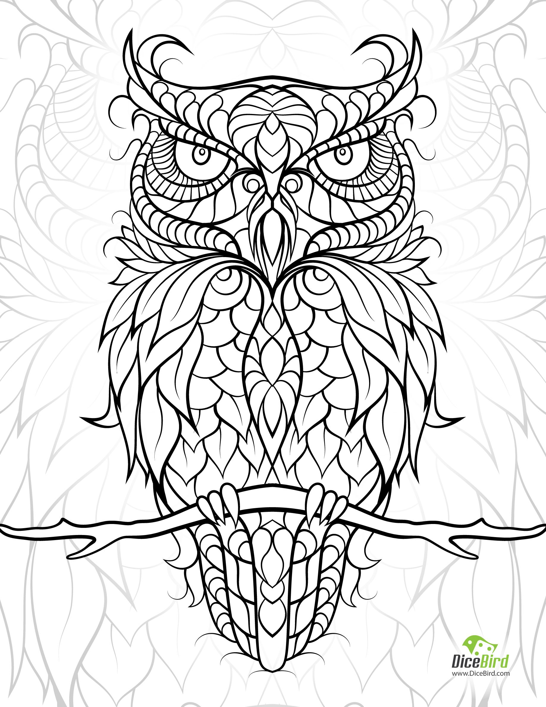 Owl coloring pages free - Owl Adult Coloring Book Pagesowl