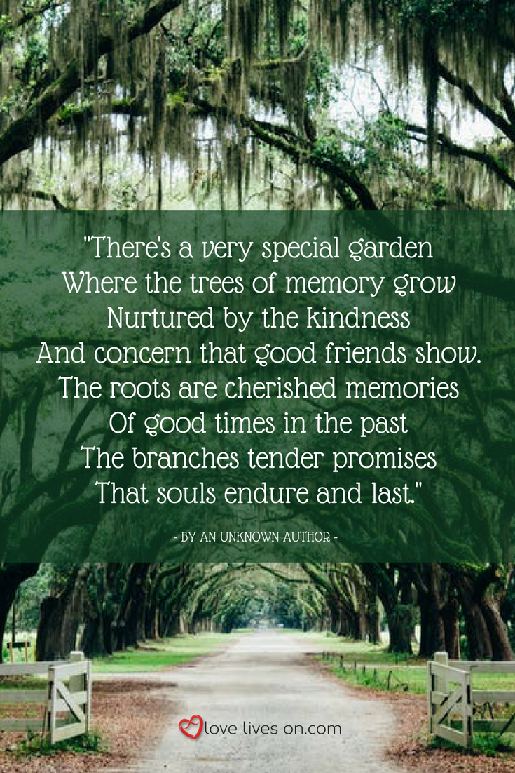 Planting A Memorial Tree Is Beautiful Way To Celebrate The Life Of Loved One And Bring Personal Touch Their Funeral Service Or