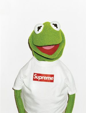 ed6a8b206b21 Kermit Supreme in Photo Style. frog sold seperately