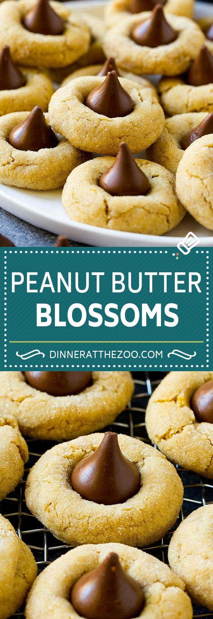 Peanut Butter Blossoms - Dinner at the Zoo