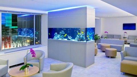 acuarios elegantes y hermosos para salones para ms informacin ingresa en http