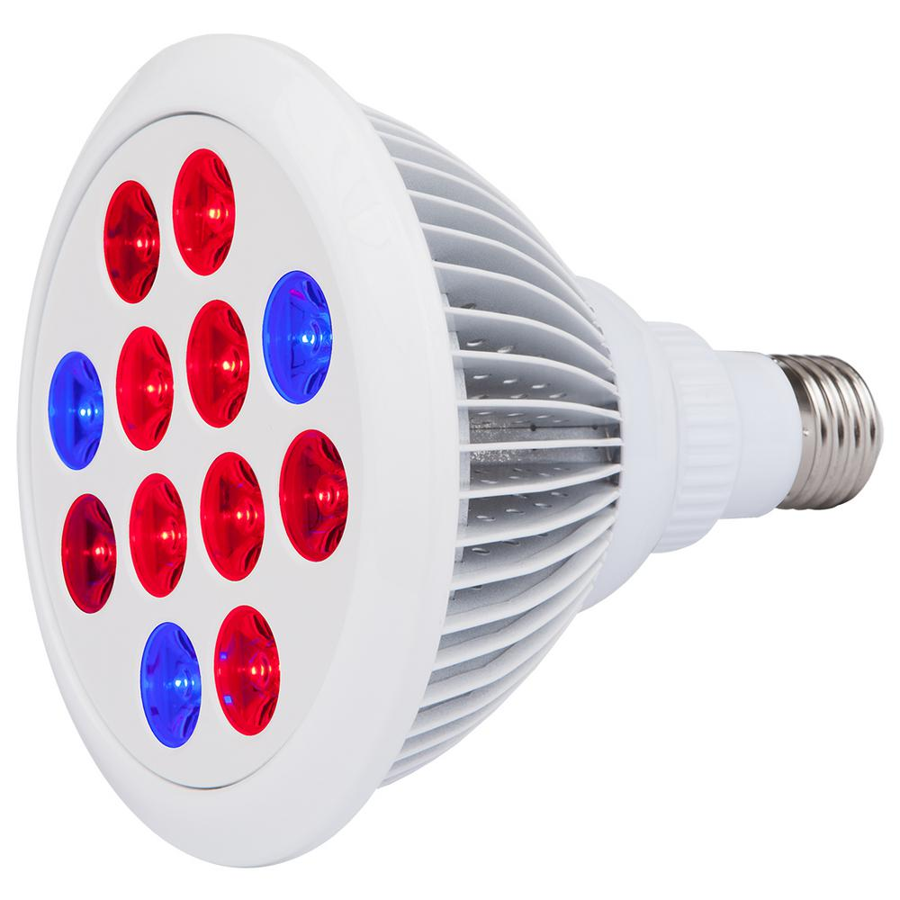Evo 24w Equivalent Red Blue Led Grow Light Bulb In 2019
