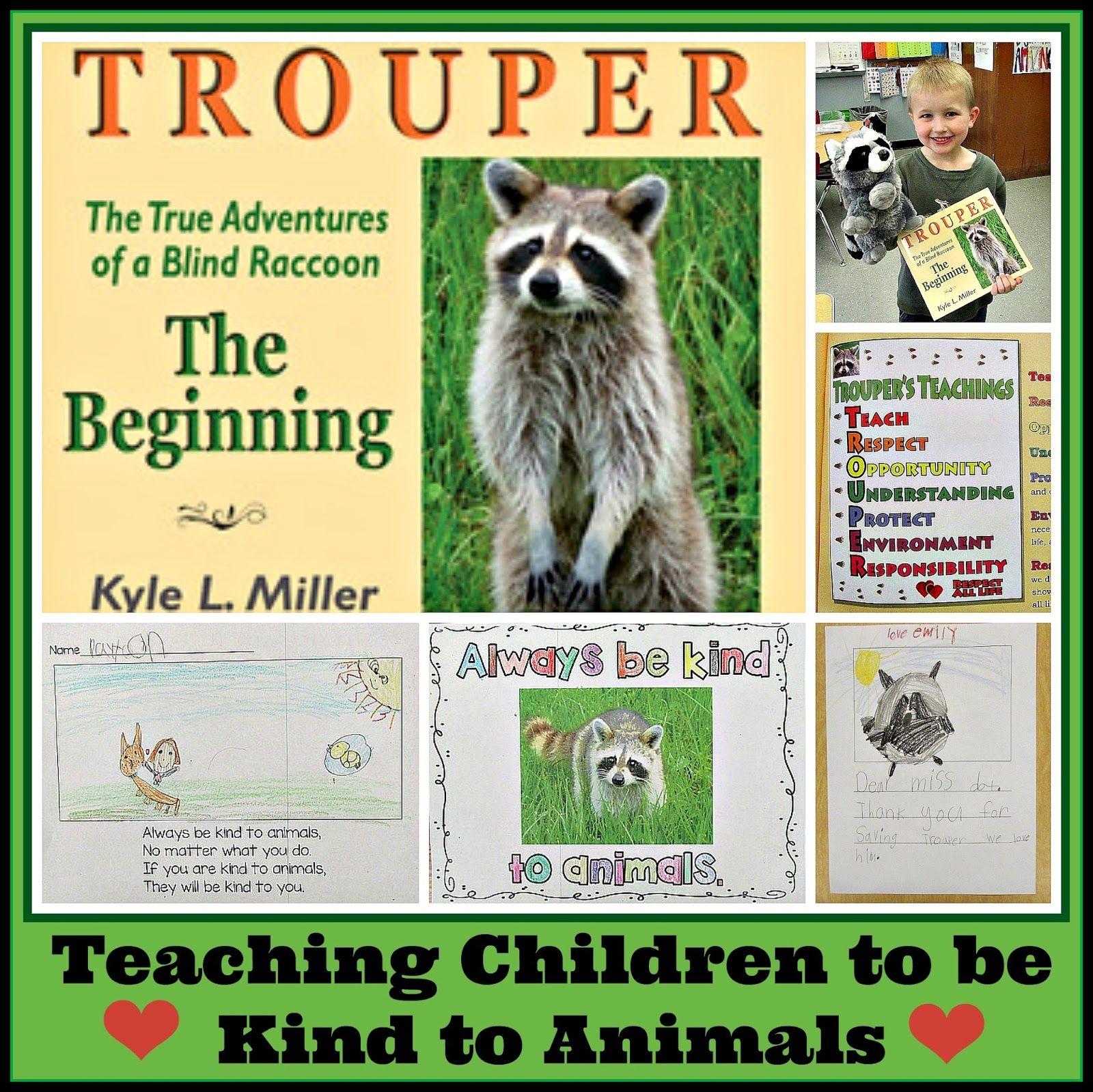 Trouper The Blind Raccoon Ambassador