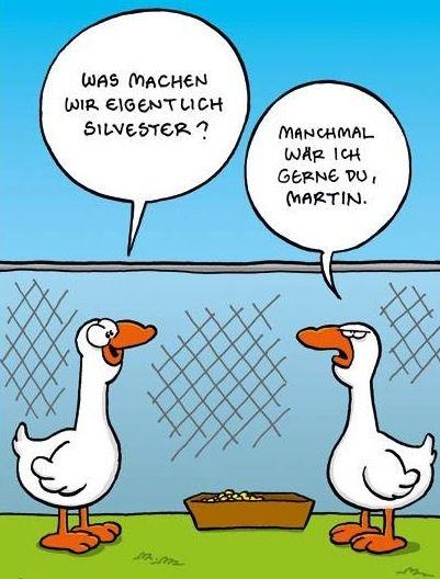 #optimist... #martinstag