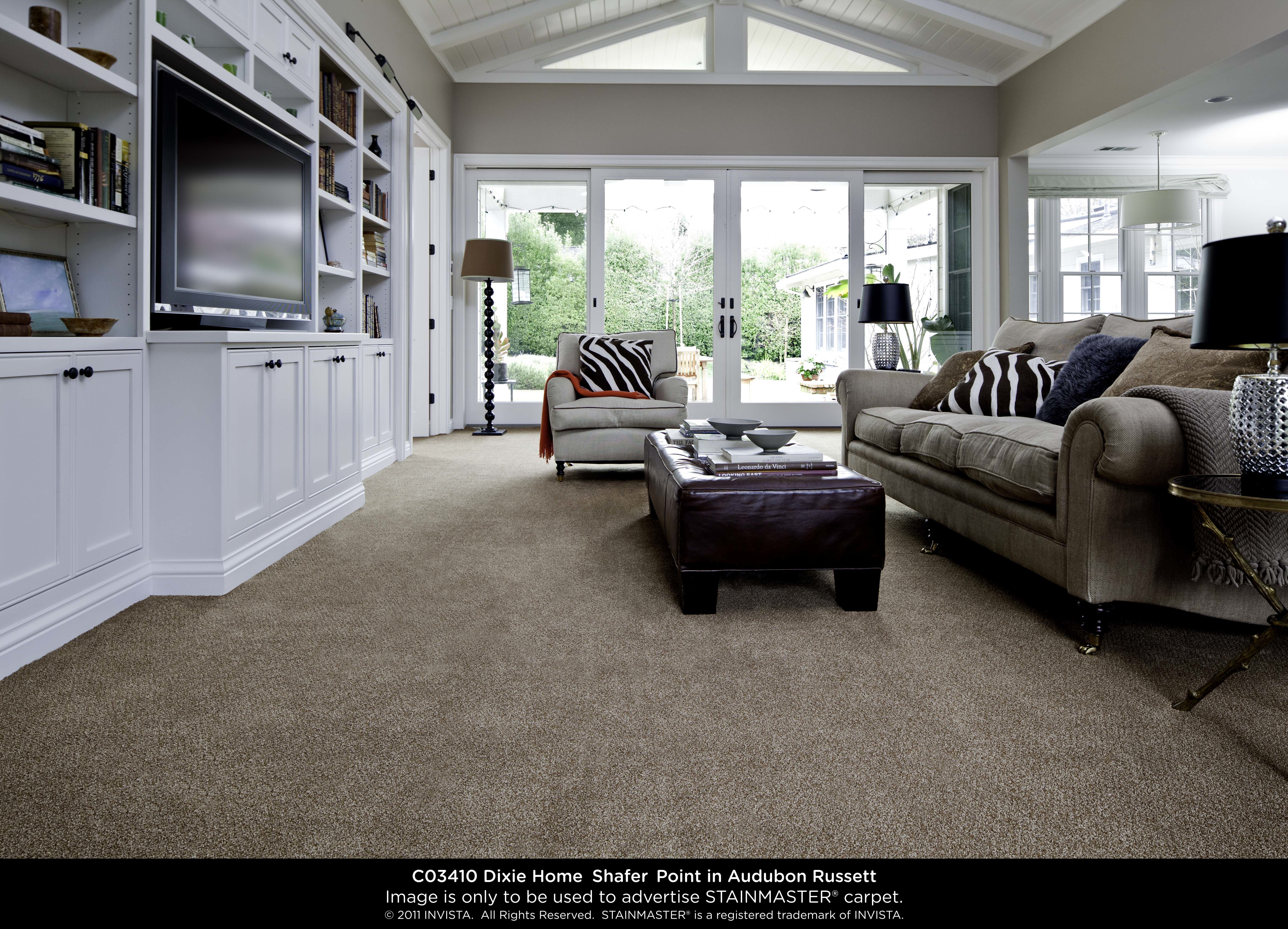 Gorgeous and durable family room carpet made in the usa for Best carpet for basement family room