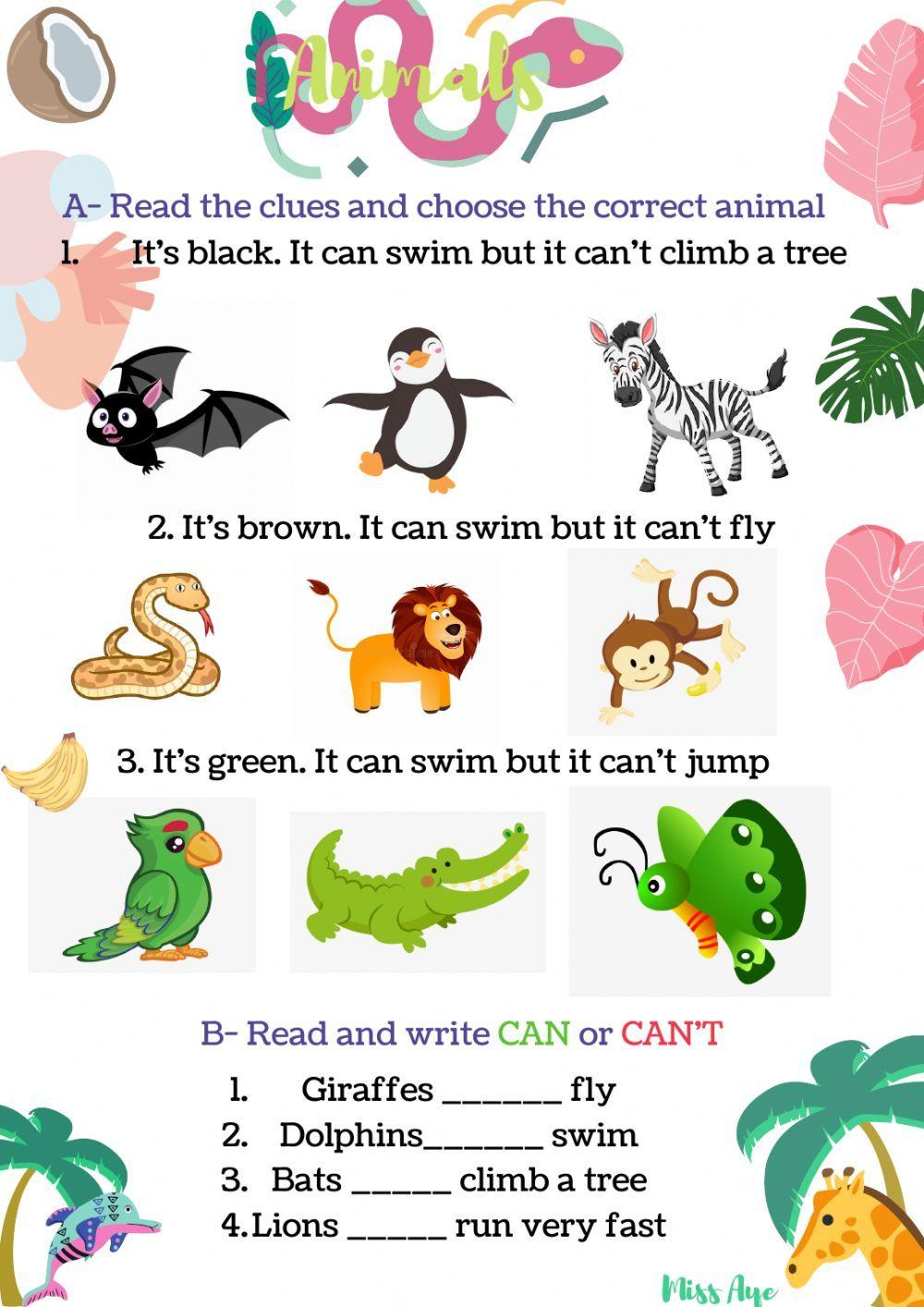 medium resolution of Wild animals - Interactive worksheet   English classes for kids
