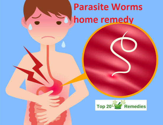 424c26712ee402cb5ab09f2a49c48091 - How To Get Rid Of Worms In Stool Naturally