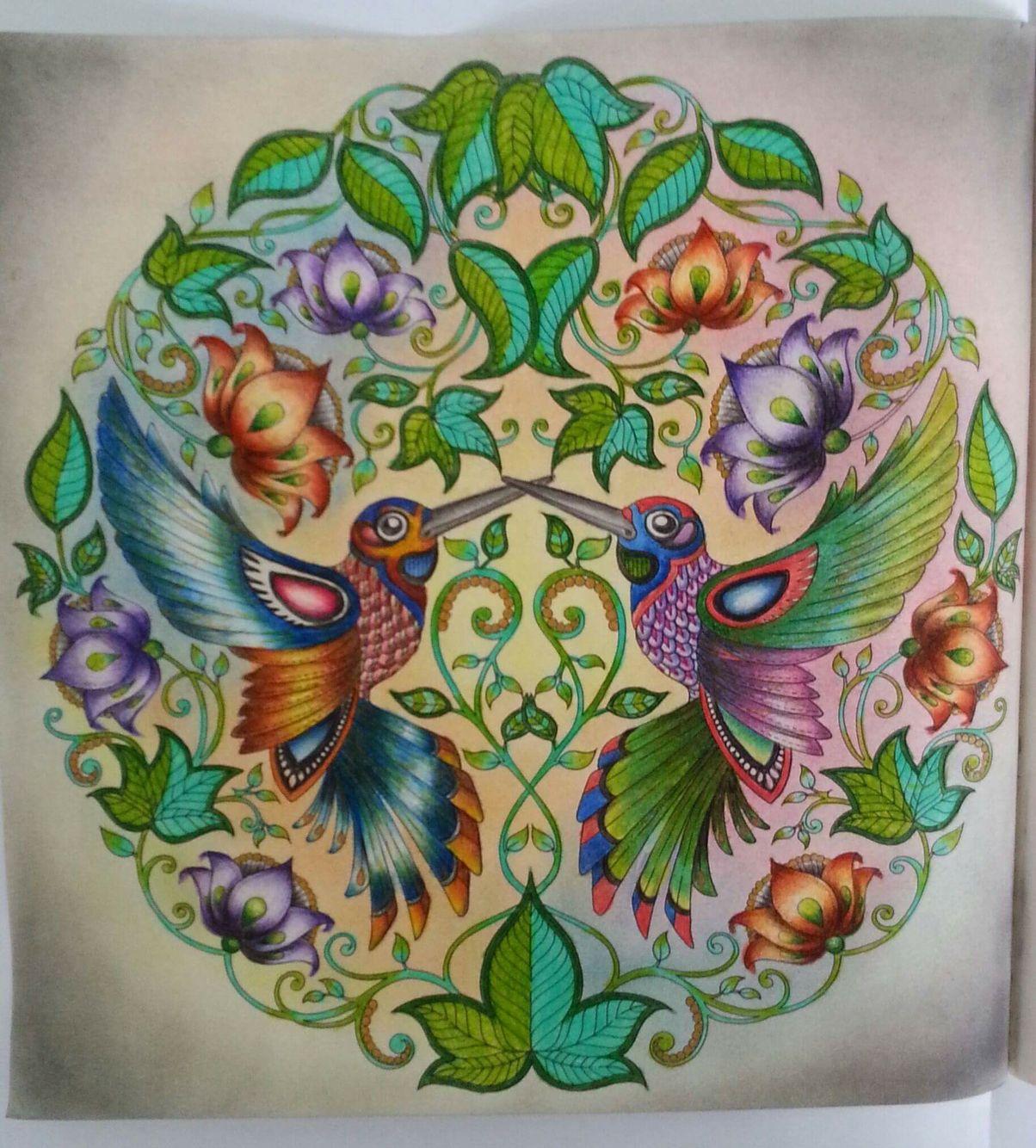 Humming birds secret garden beija flores jardim secreto for El jardin secreto johanna basford