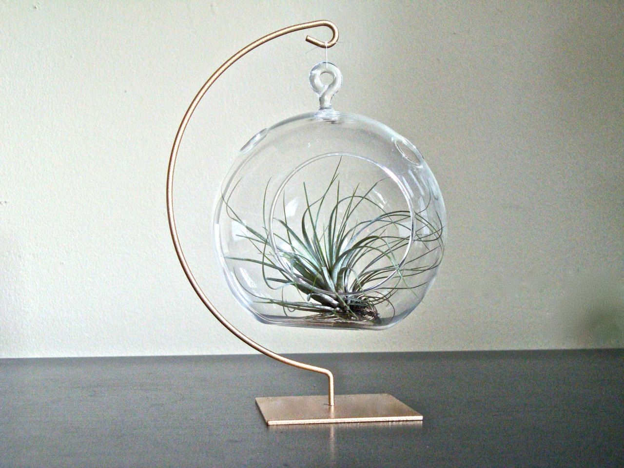 Terrarium or table decoration hanging glass globe with gold painted