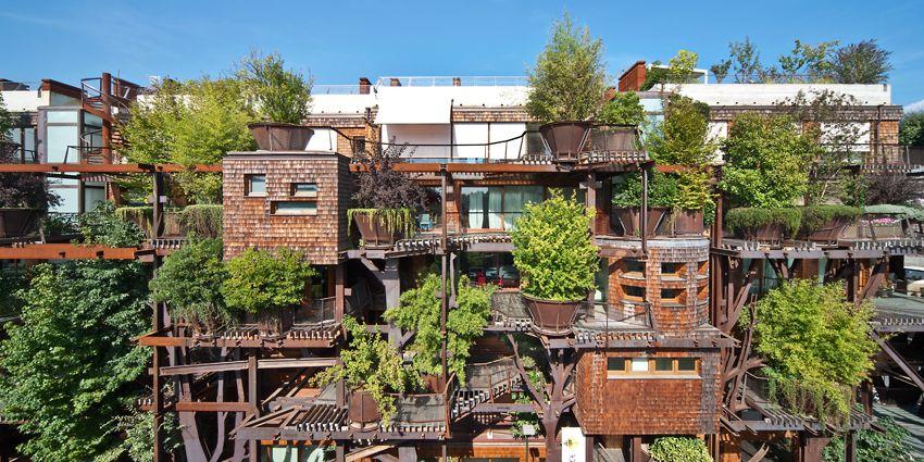 25 verde la casa albero di torino house green pictures for Casa design torino
