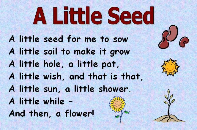 Themed Poems Seeds And Plants A Selection Of Themed