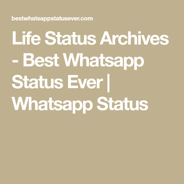 Check Out All The Best Life Status And Also Other Type Of