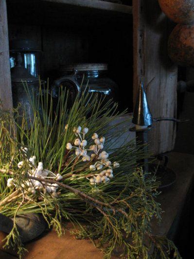beautiful pines...