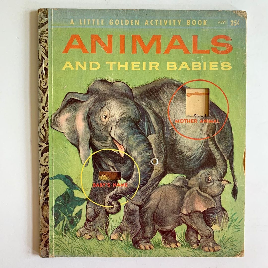 Animals And Their Babies Activity Book Copyright A