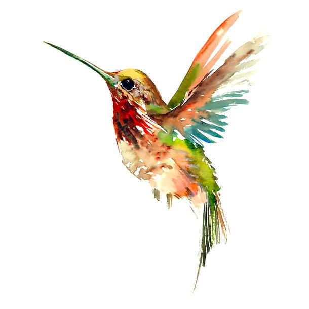 Cool Watercolor Hummingbird Tattoo Design | Hummingbird colors ...