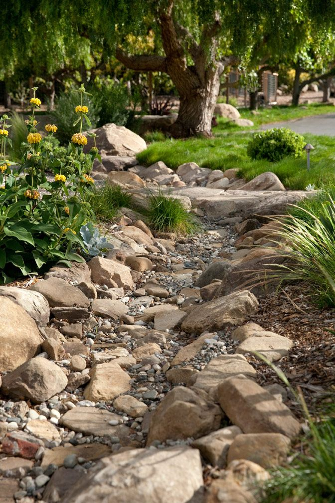 Dry creek bed with nice plantings and varied stone sizes for texture ...