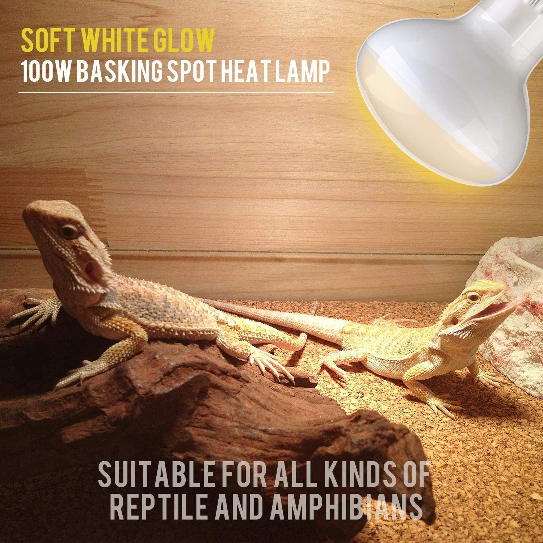 Aomryom 2 Pack 100w Uva Basking Spot Lamp Soft White Light Heat Bulb Reptiles Amphibians Use Ad Basking Affili Reptiles And Amphibians Amphibians Reptiles