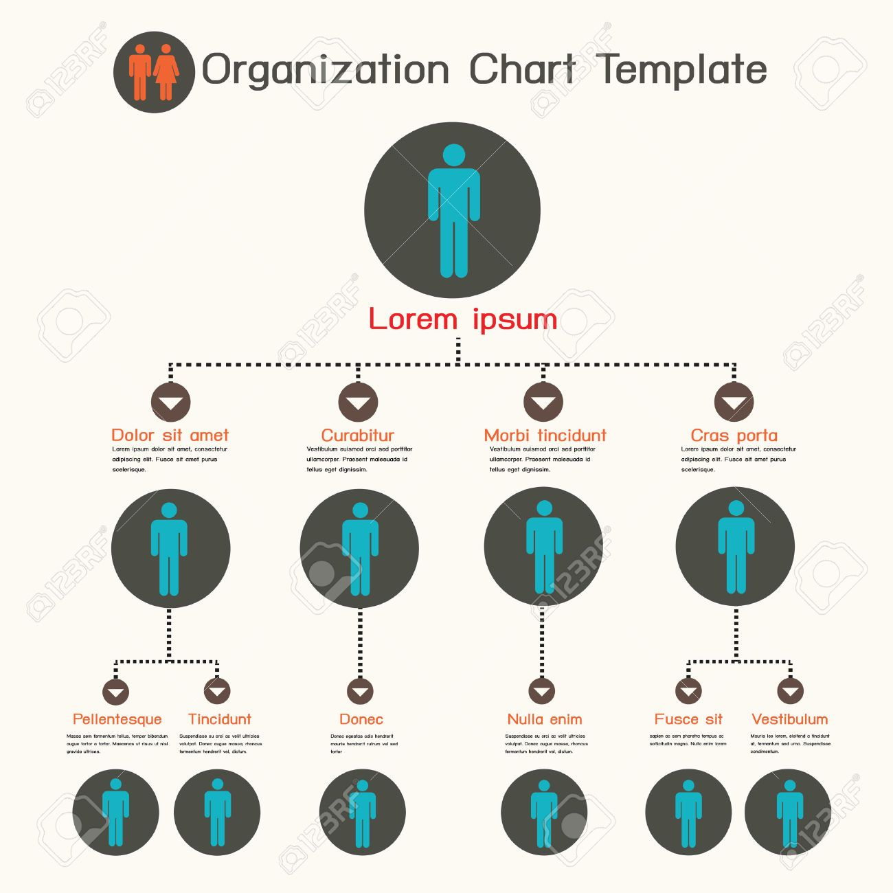 organigram template - organogram infographic google search deezyne