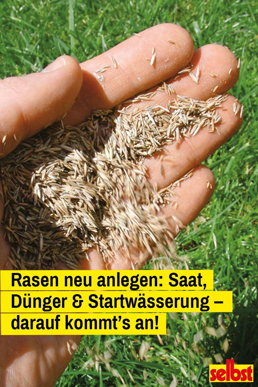 Rasen Anlegen Rasen Anlegen Rasen Und Gartenarbeit